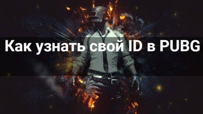 Как узнать свой ID в PUBG