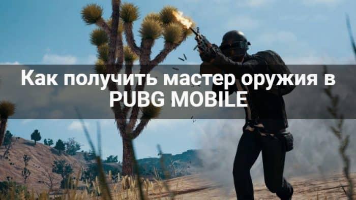 мастер оружия в pubg mobile