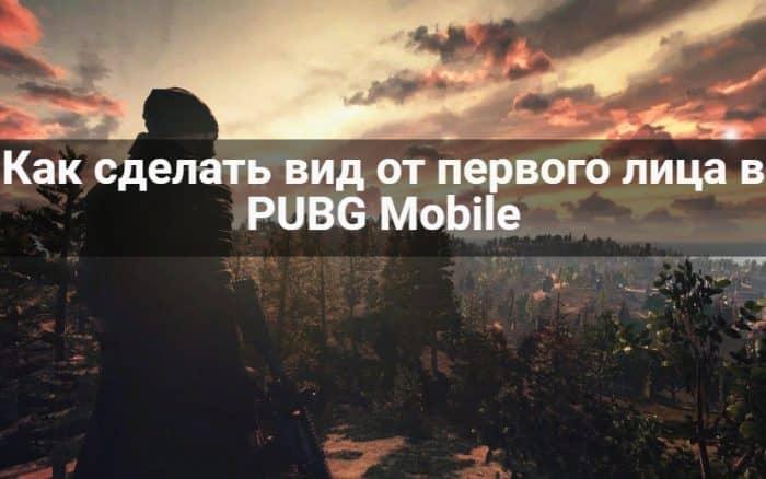 вид от 1 лица pubg mobile